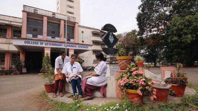 Kerala Veterinary and Animal Sciences University - Veterinary Doctors